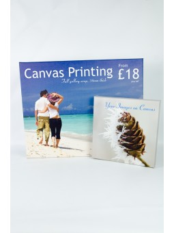 Canvas Print 24'' x 12'' x 38mm deep