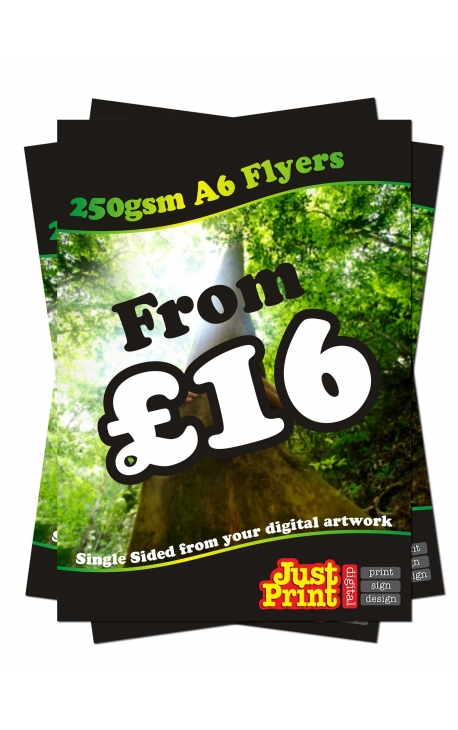 25 A6 Single Sided Flyers on 250gsm