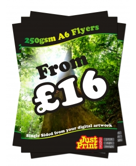 1500 A6 Single Sided Flyers on 250gsm