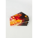 500 x Silk Single Sided Business Cards on 350gsm card