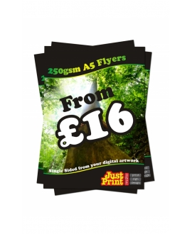 1500 A5 Double Sided Flyers on 250gsm