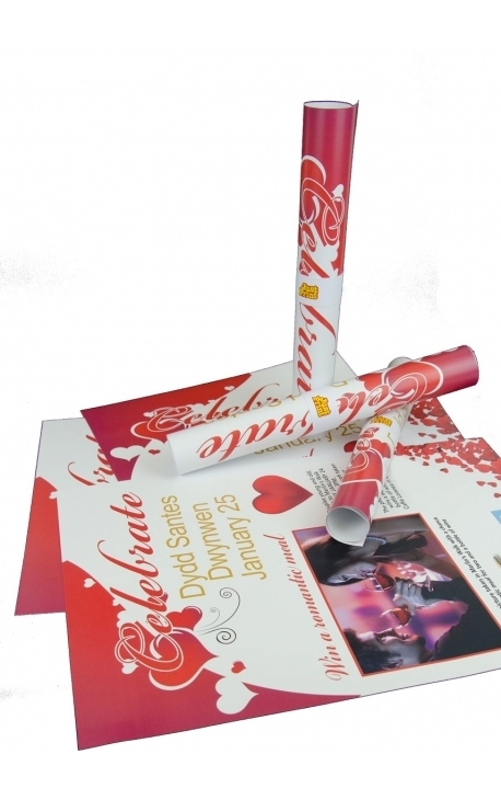 100 Deluxe 250gsm Single Sided A3 Poster