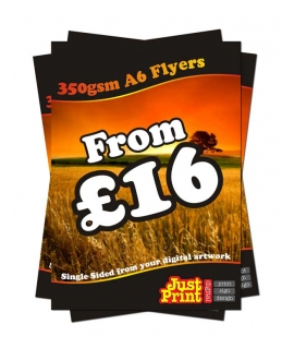 25 A6 Single Sided Flyers on 350gsm