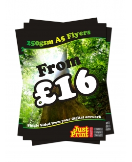 25 A5 single Sided Fliers on 250gsm