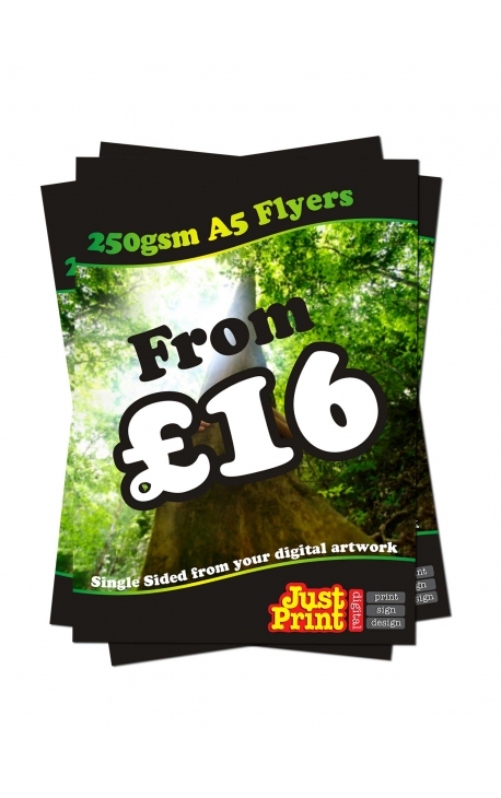 50 A5 single Sided Fliers on 250gsm