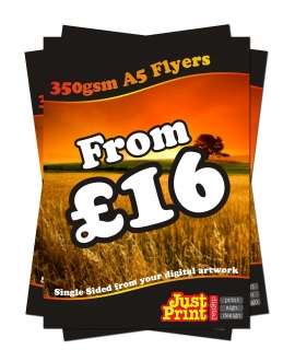25 A5 single Sided Fliers on 350gsm
