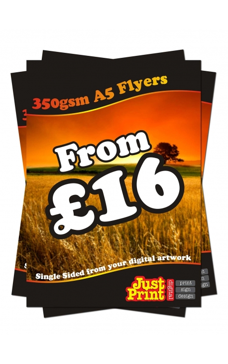 1000 A5 Single Sided Flyers on 350gsm