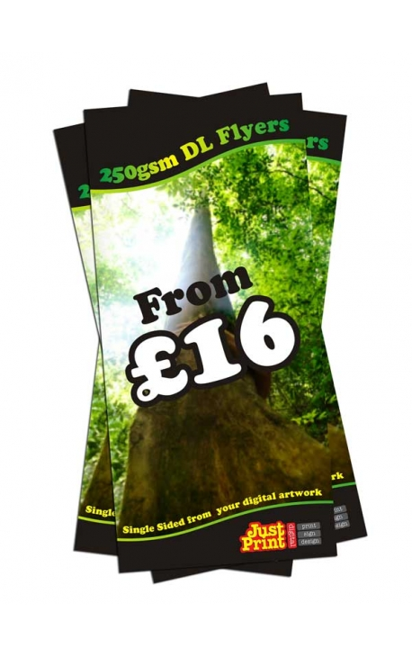 25 DL single sided Flyers on 250gsm