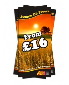 25 DL single sided Flyers on 350gsm