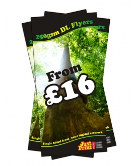 1000 DL Single Sided Flyers on 250gsm