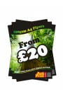25 A4 Single Sided Flyers on 250gsm