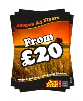 100 A4 Single Sided Leaflets on 350gsm
