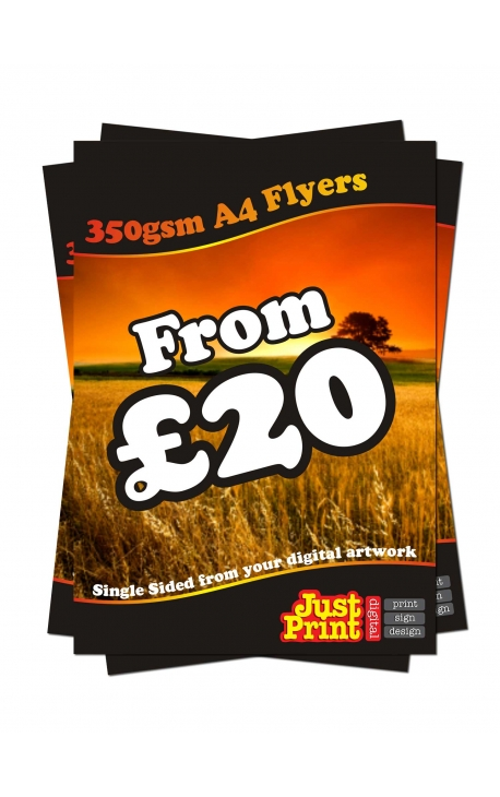 100 A4 Single Sided Leaflets on 350gsm