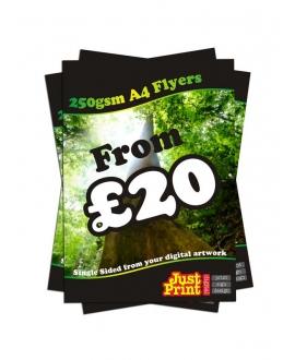 250 A4 Single Sided Leaflets on 250gsm