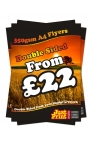 250 A4 Single Sided Leaflets on 350gsm
