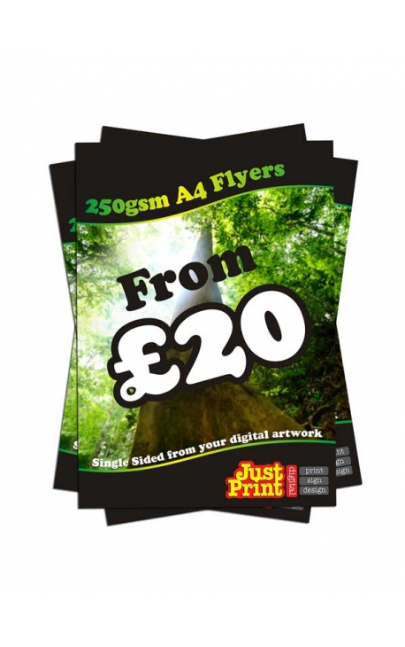 1000 A4 Single Sided Flyers on 250gsm