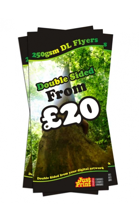 25 Double Sided DL Flyers on 250gsm