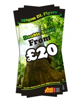 50 Double Sided DL Flyers on 250gsm