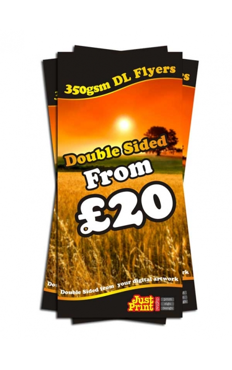 250 DL Double Sided Leaflets on 350gsm