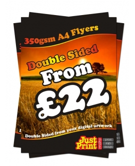 25 A4 Double Sided Leaflets on 350gsm