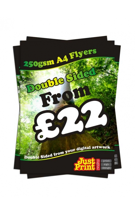 100 A4 Double Sided Leaflets on 250gsm