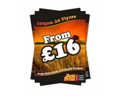 A6 Single Sided 350gsm Leaflets