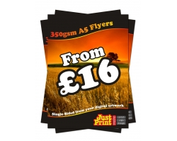 A5 Single Sided 350gsm Flyers