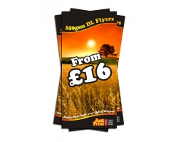 DL Single Sided 350gsm Flyers