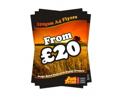 A4 Single Sided 350gsm Flyers