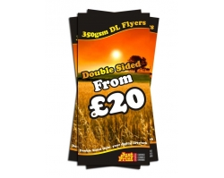 DL Double Sided 350gsm Leaflets