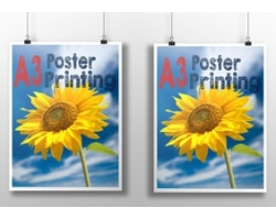 Double Sided A3 Poster