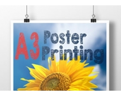 Single Sided A3 Poster