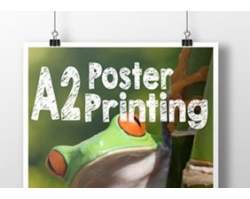 Single Sided A2 Poster