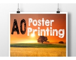 Single Sided A0 Poster