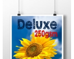 Deluxe Double Sided A3 Poster