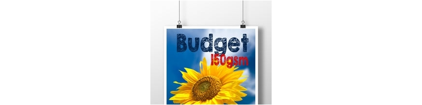 Budget Double Sided A3 Poster