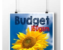 Budget Single Sided A3 Posters