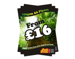 A6 250gsm Flyers