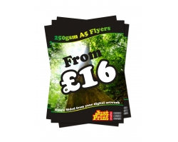 A5 250gsm Flyers