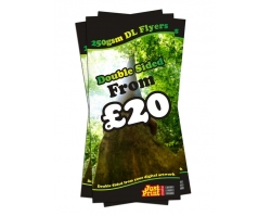 DL Double Sided 250gsm Leaflets