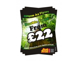 A4 Double Sided 250gsm Flyers